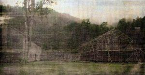 1928年(昭和3年)