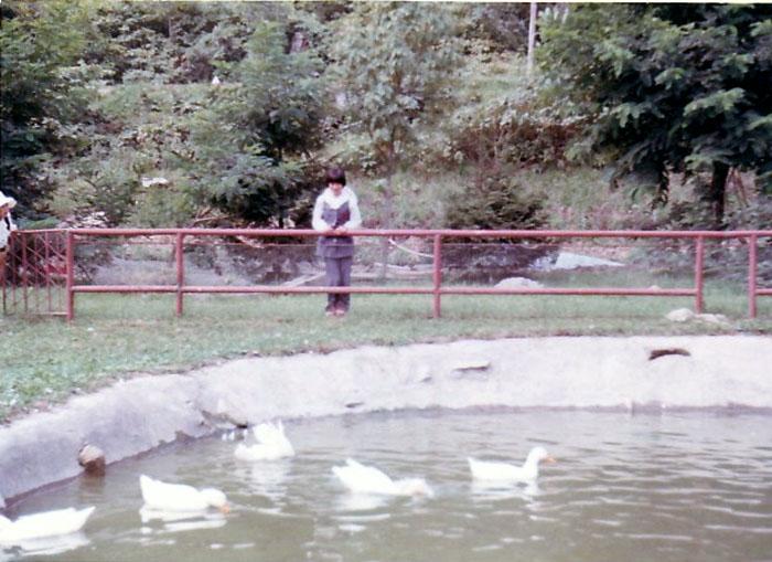 昭和48年 湖畔亭付近の小公園