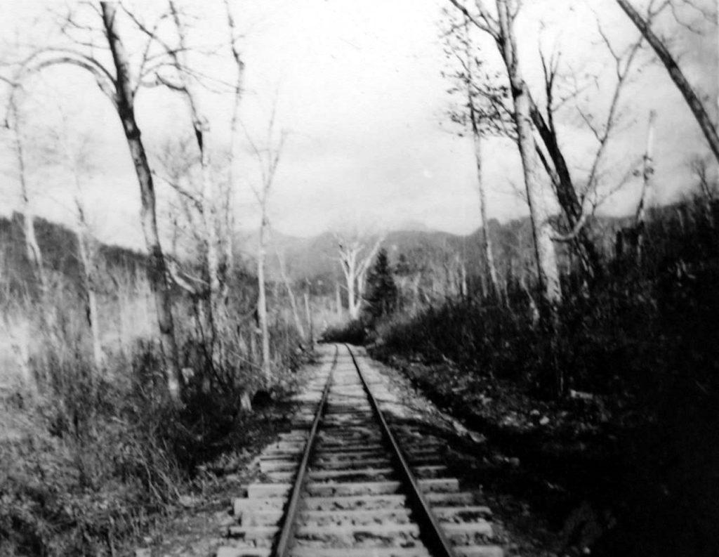 下夕張森林鉄道 夕張岳線 (桜ヶ岡)