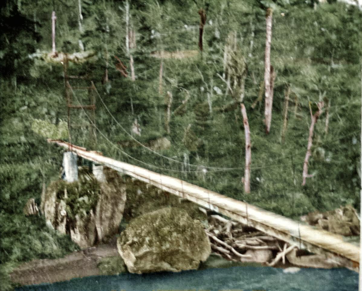 桜ヶ岡 3号つり橋