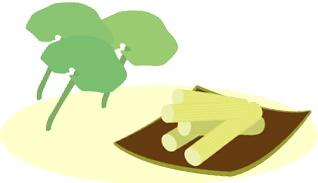 食憶(その7 住環境と食生活)|長谷川潤一