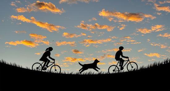 子供用自転車が普及し始めた頃 | Kawauchi Masami